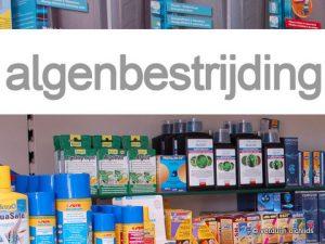 Middelen tegen algen